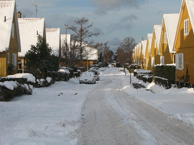 Sne-2010-12-03_IMG_2280